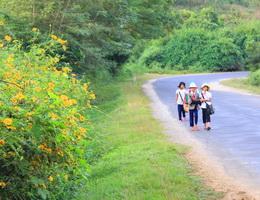 Thời gian em đi học Tố Hà, Hiền Thục, Lan Vy